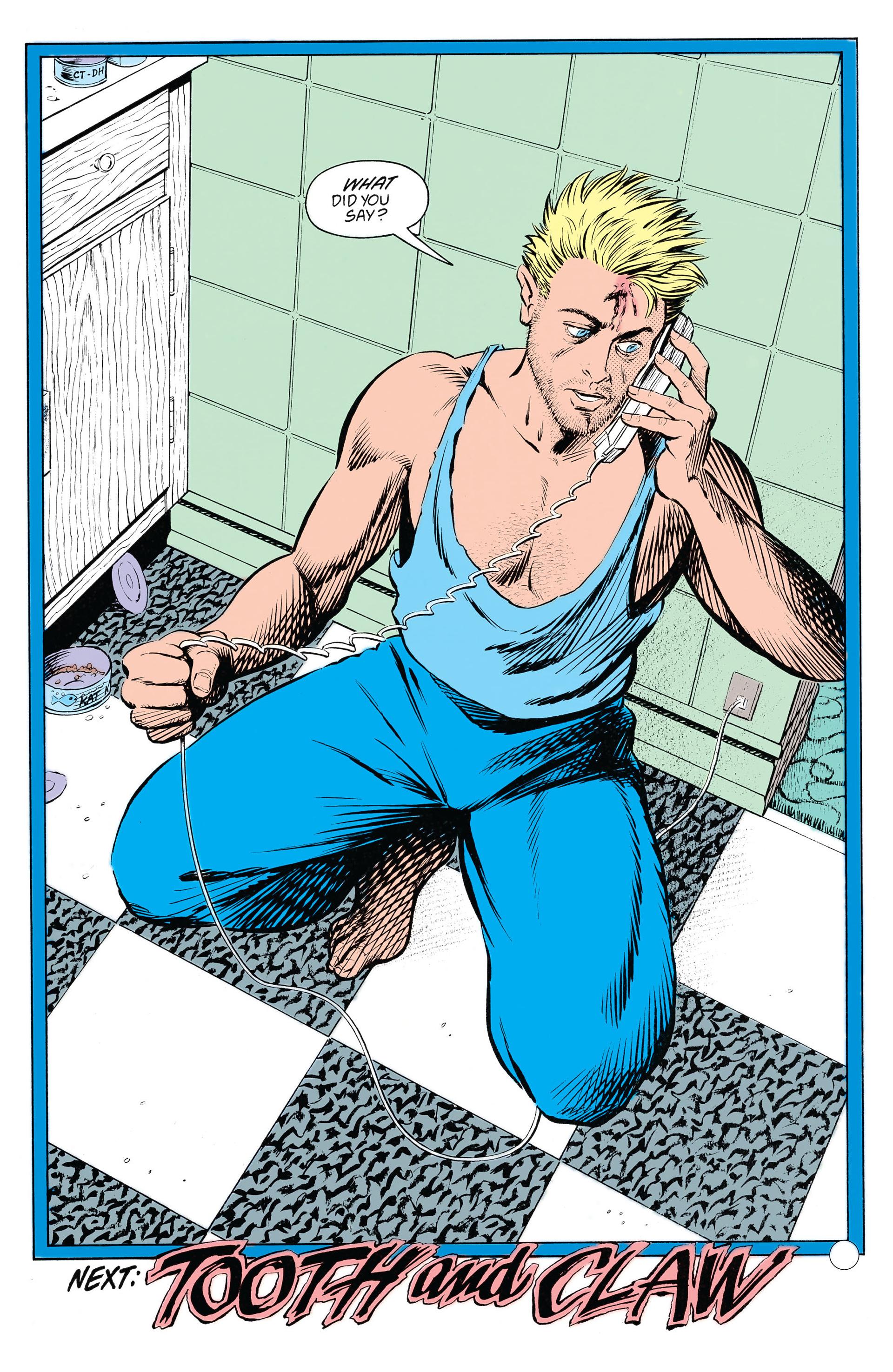 Read online Animal Man (1988) comic -  Issue #20 - 25