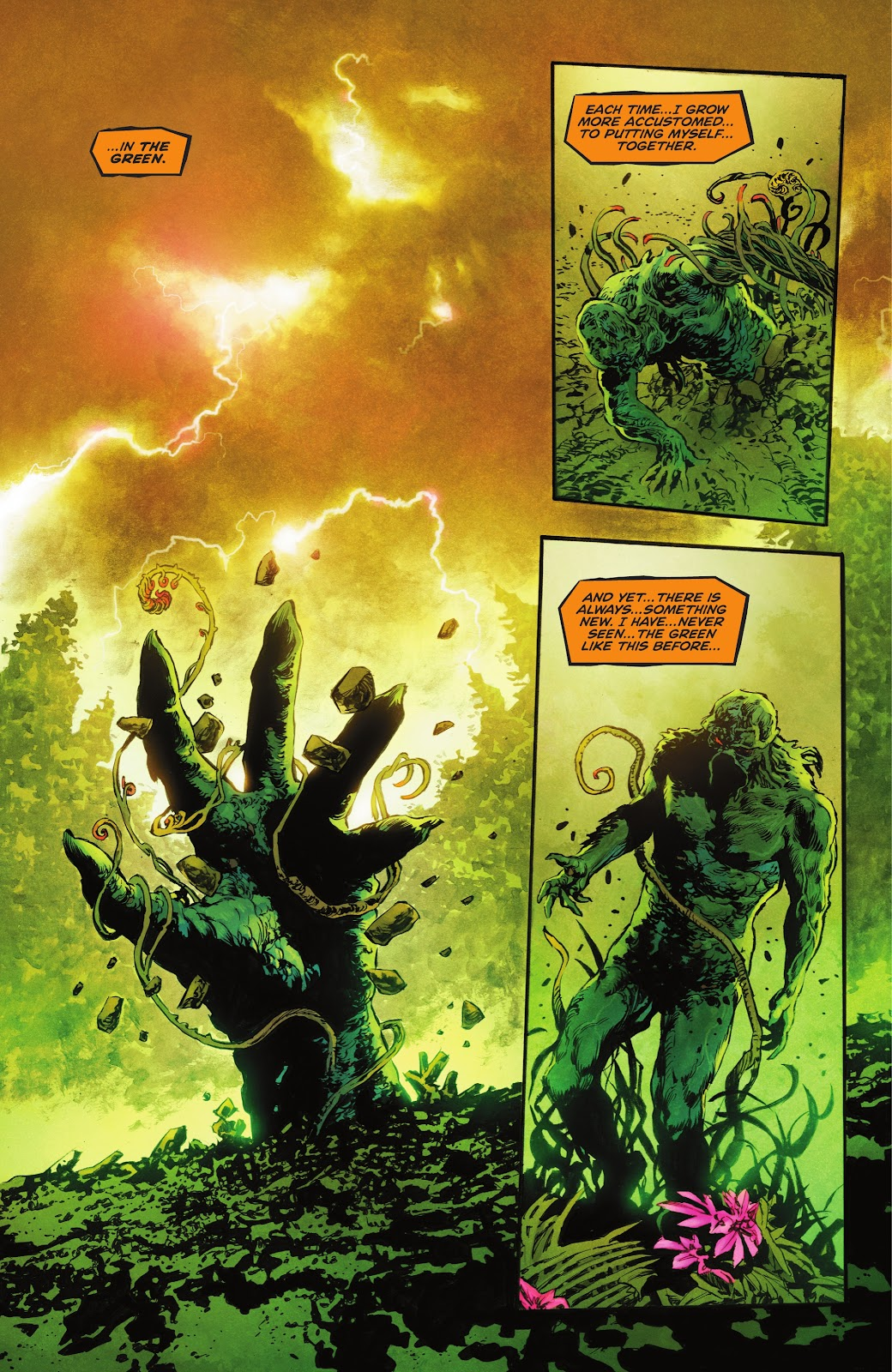 The Swamp Thing issue 3 - Page 6