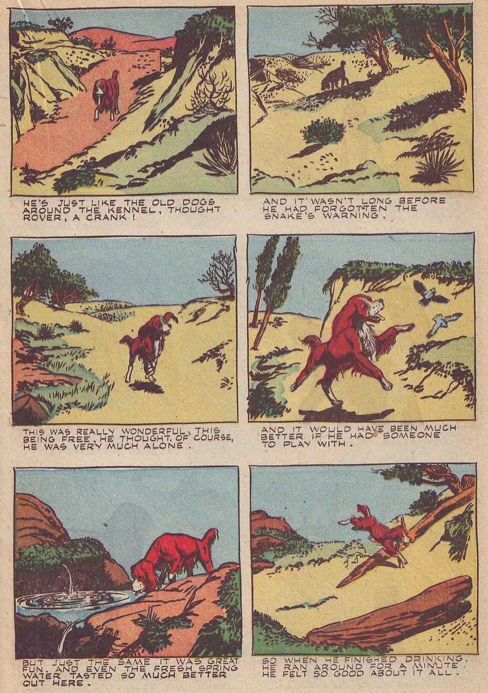 Read online Animal Comics comic -  Issue #20 - 25