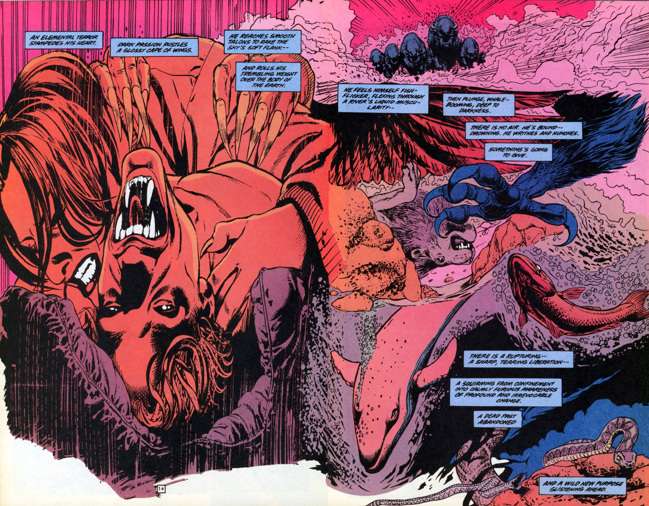 Read online Animal Man (1988) comic -  Issue #70 - 15