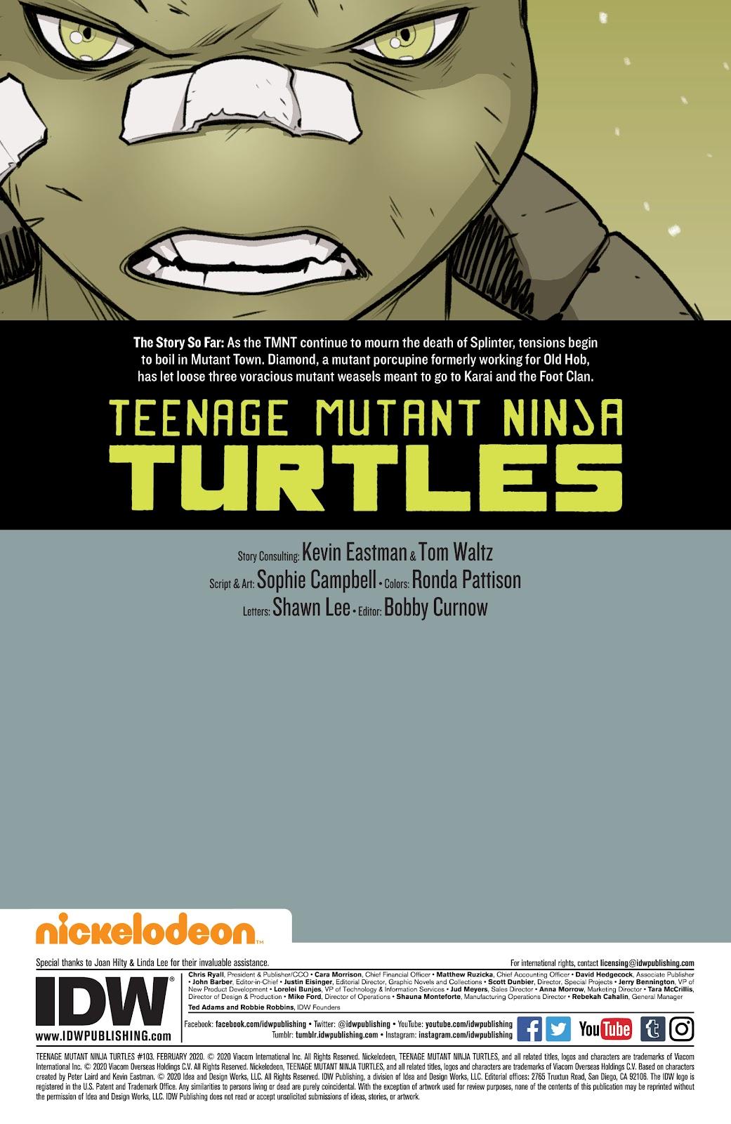 Read online Teenage Mutant Ninja Turtles (2011) comic -  Issue #103 - 2