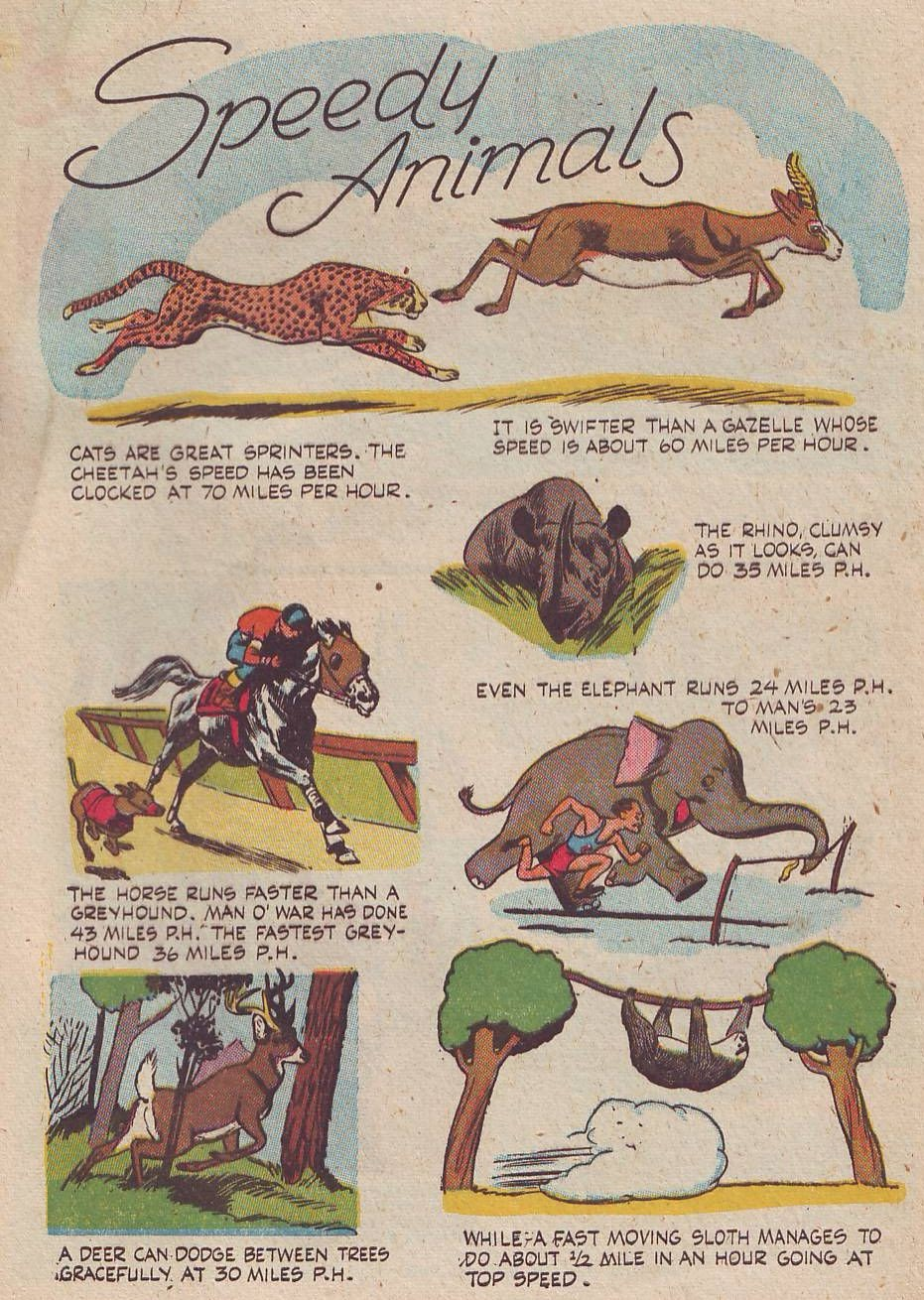 Read online Animal Comics comic -  Issue #26 - 43