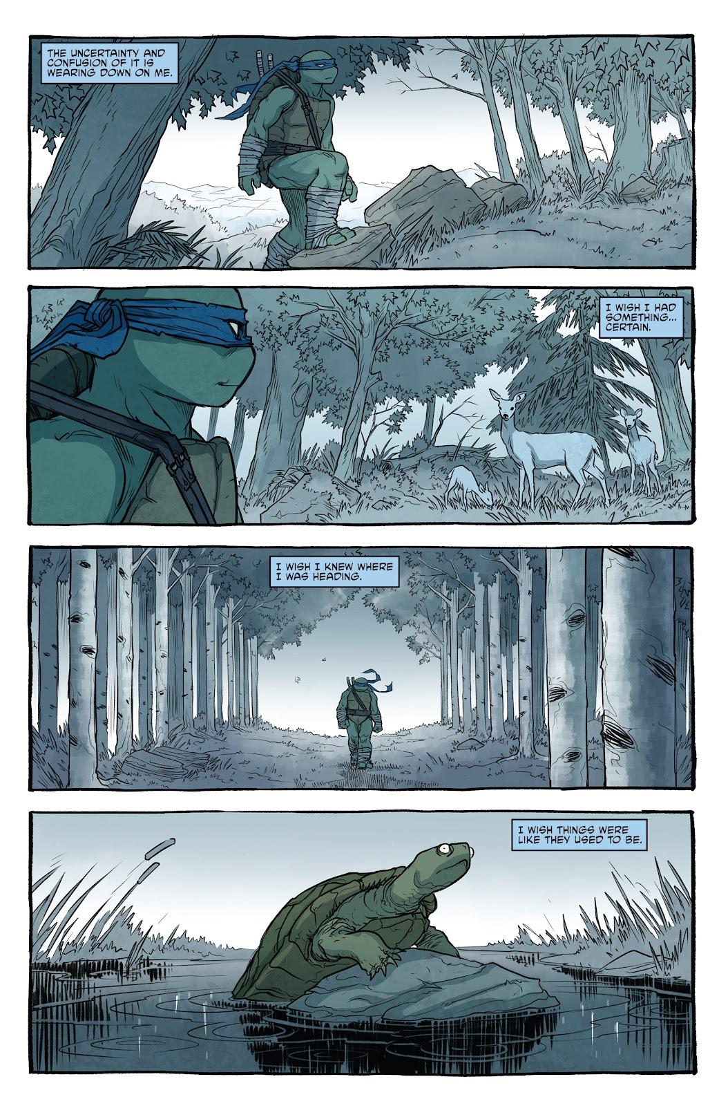 Read online Teenage Mutant Ninja Turtles (2011) comic -  Issue #101 - 35
