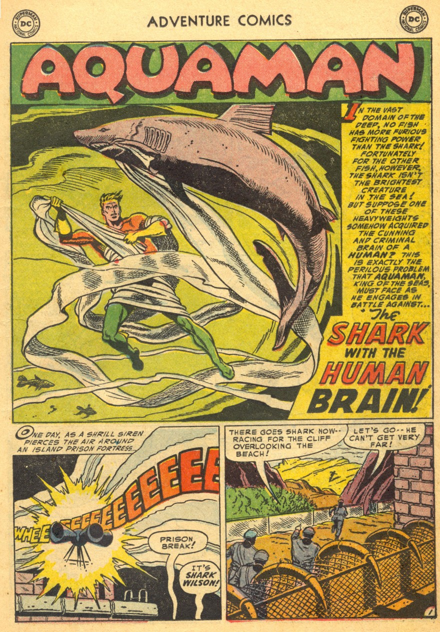 Read online Adventure Comics (1938) comic -  Issue #203 - 17