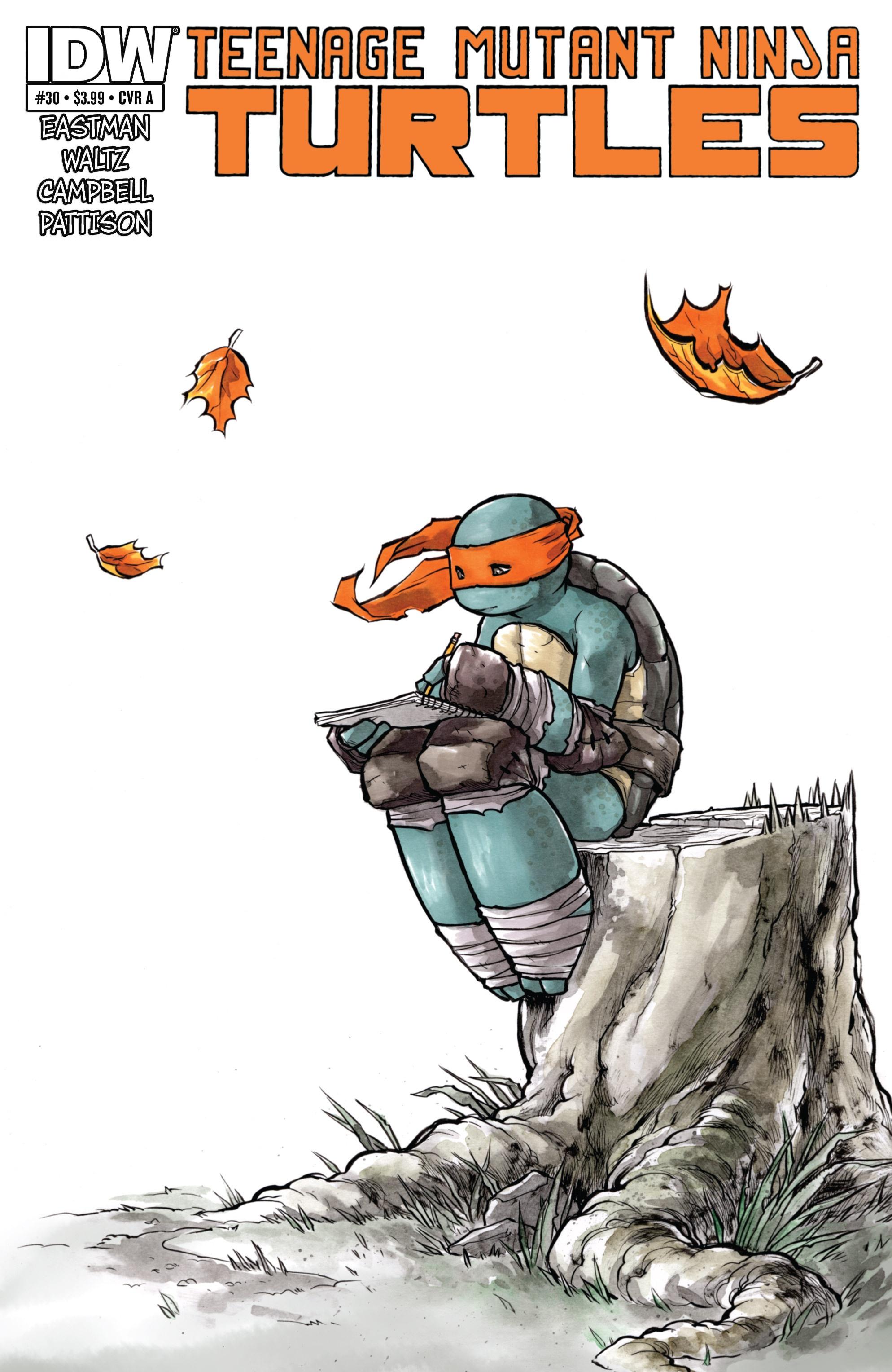 Teenage Mutant Ninja Turtles (2011) 30 Page 1
