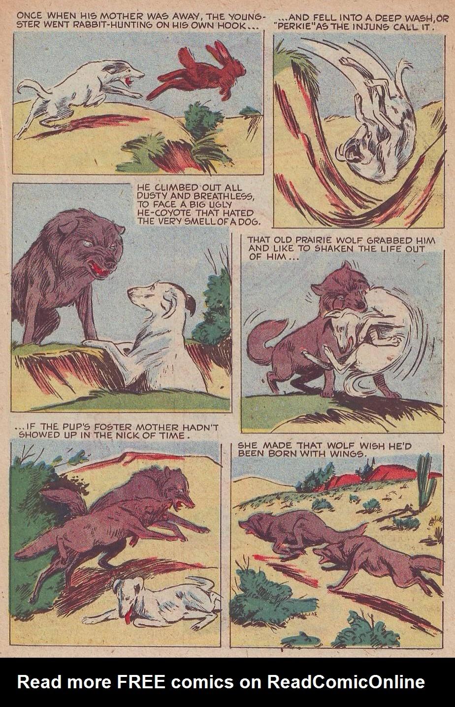 Read online Animal Comics comic -  Issue #30 - 29