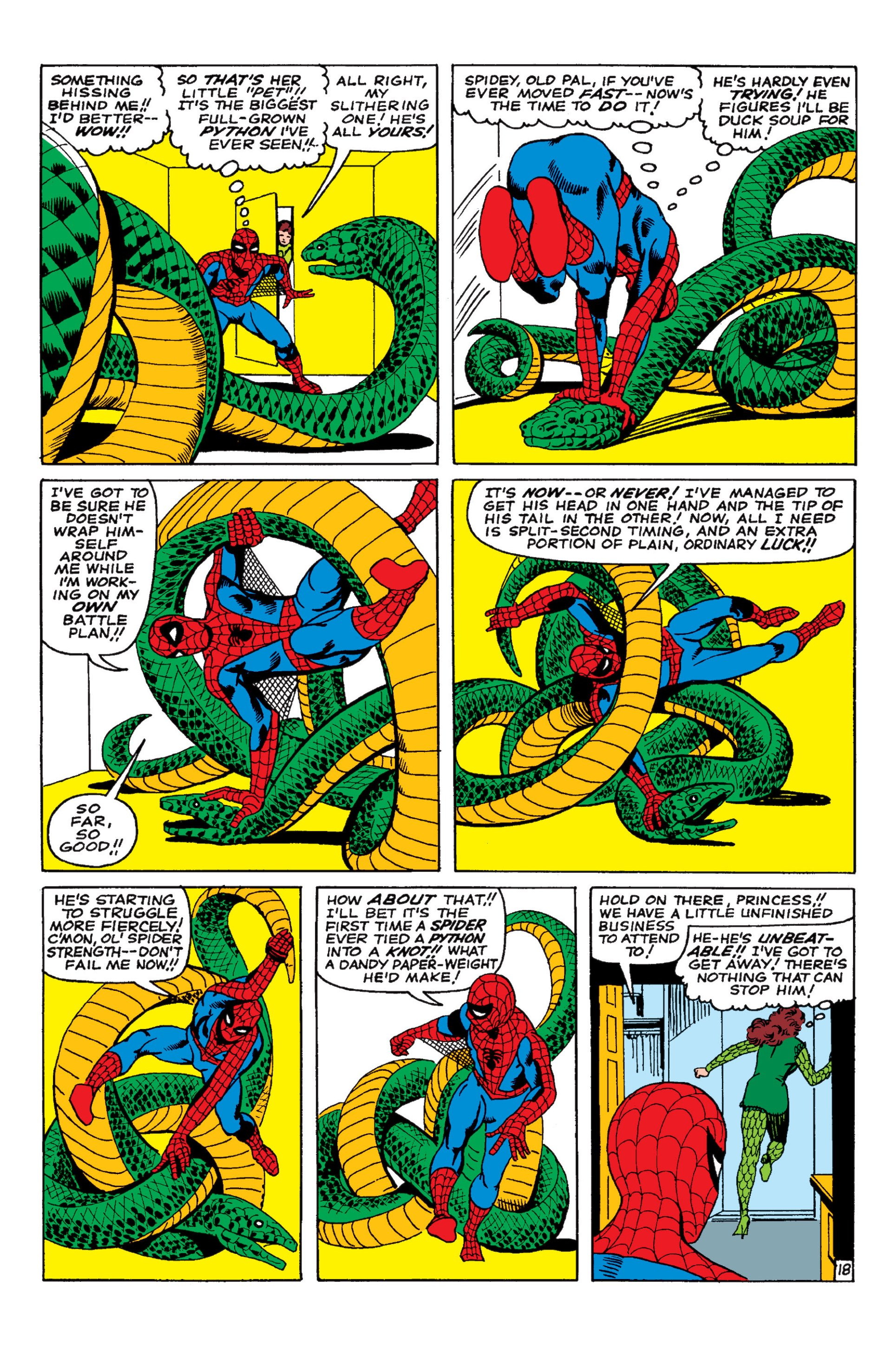 The Amazing Spider-Man (1963) 22 Page 18