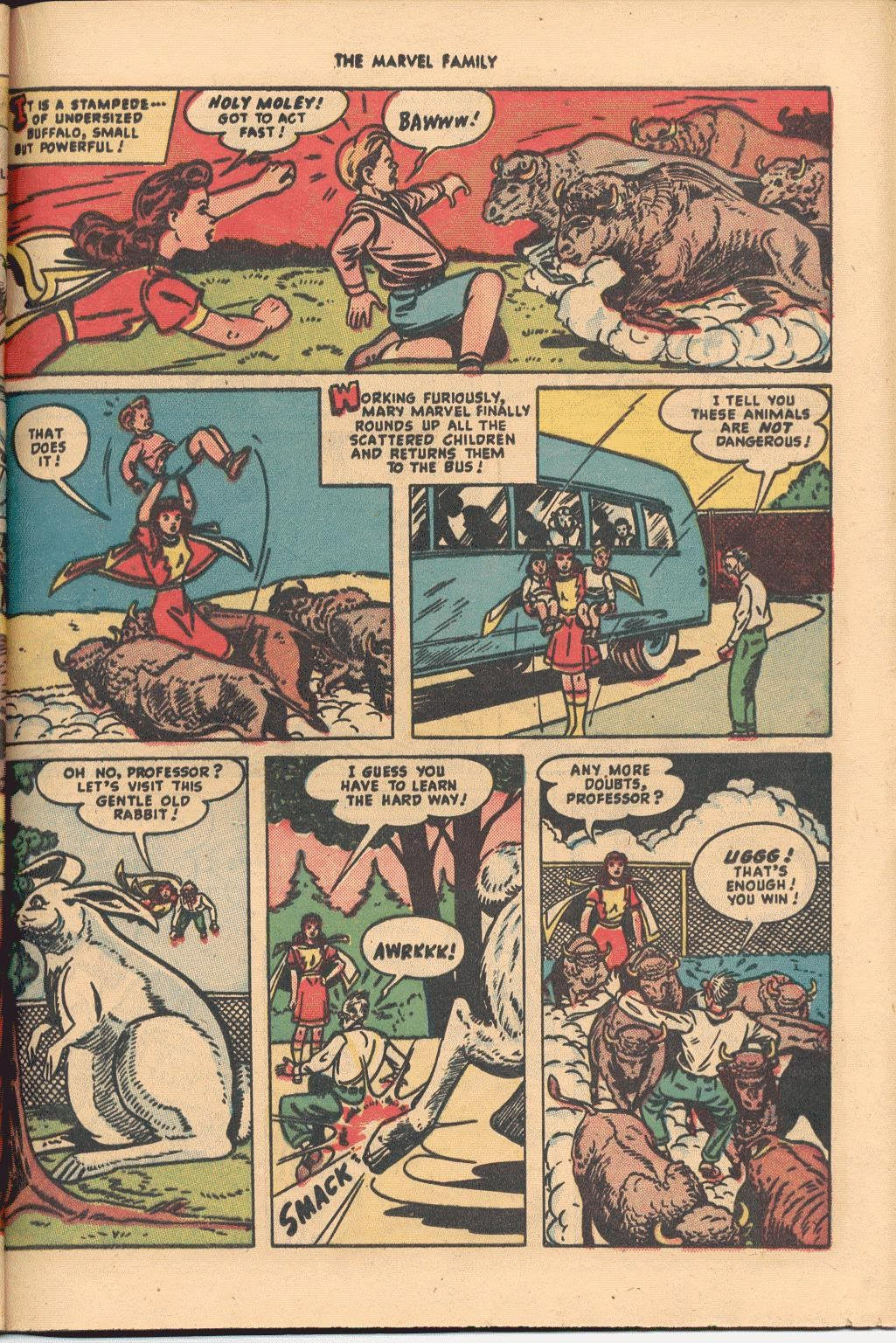 The Marvel Family issue 38 - Page 31
