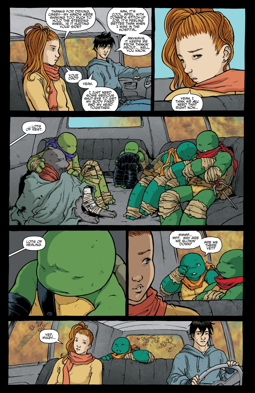 Read online Teenage Mutant Ninja Turtles: The IDW Collection comic -  Issue # TPB 4 (Part 1) - 9