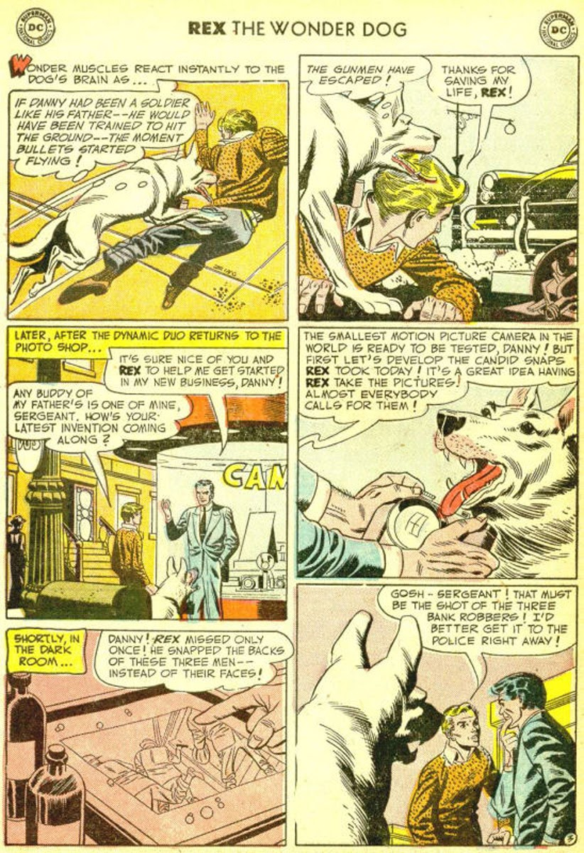 The Adventures of Rex the Wonder Dog issue 3 - Page 29