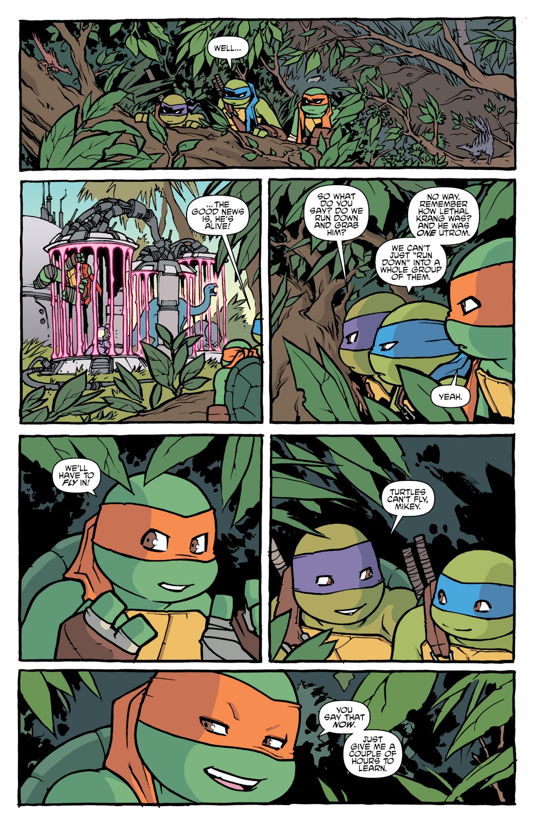 Read online Teenage Mutant Ninja Turtles: The IDW Collection comic -  Issue # TPB 5 (Part 1) - 19