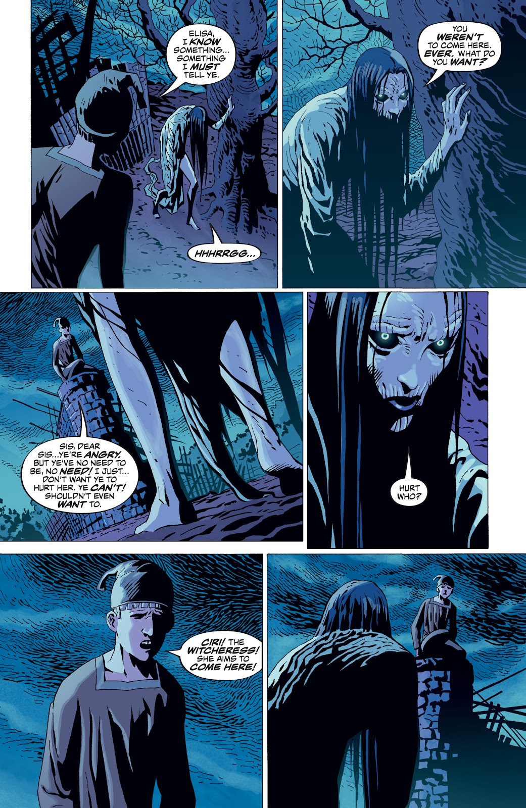 Read online The Witcher Omnibus comic -  Issue # TPB (Part 4) - 79