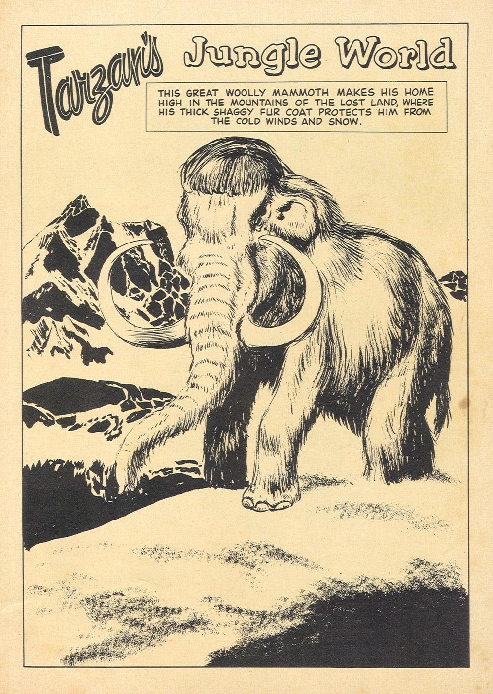 Tarzan (1948) issue 121 - Page 35