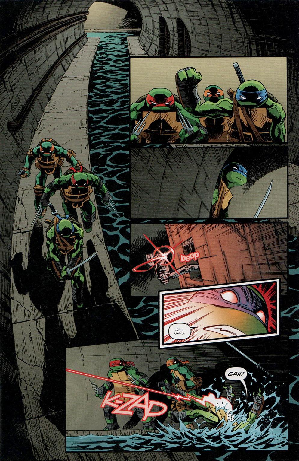 Read online Free Comic Book Day 2017 comic -  Issue # Teenage Mutant Ninja Turtles - 3