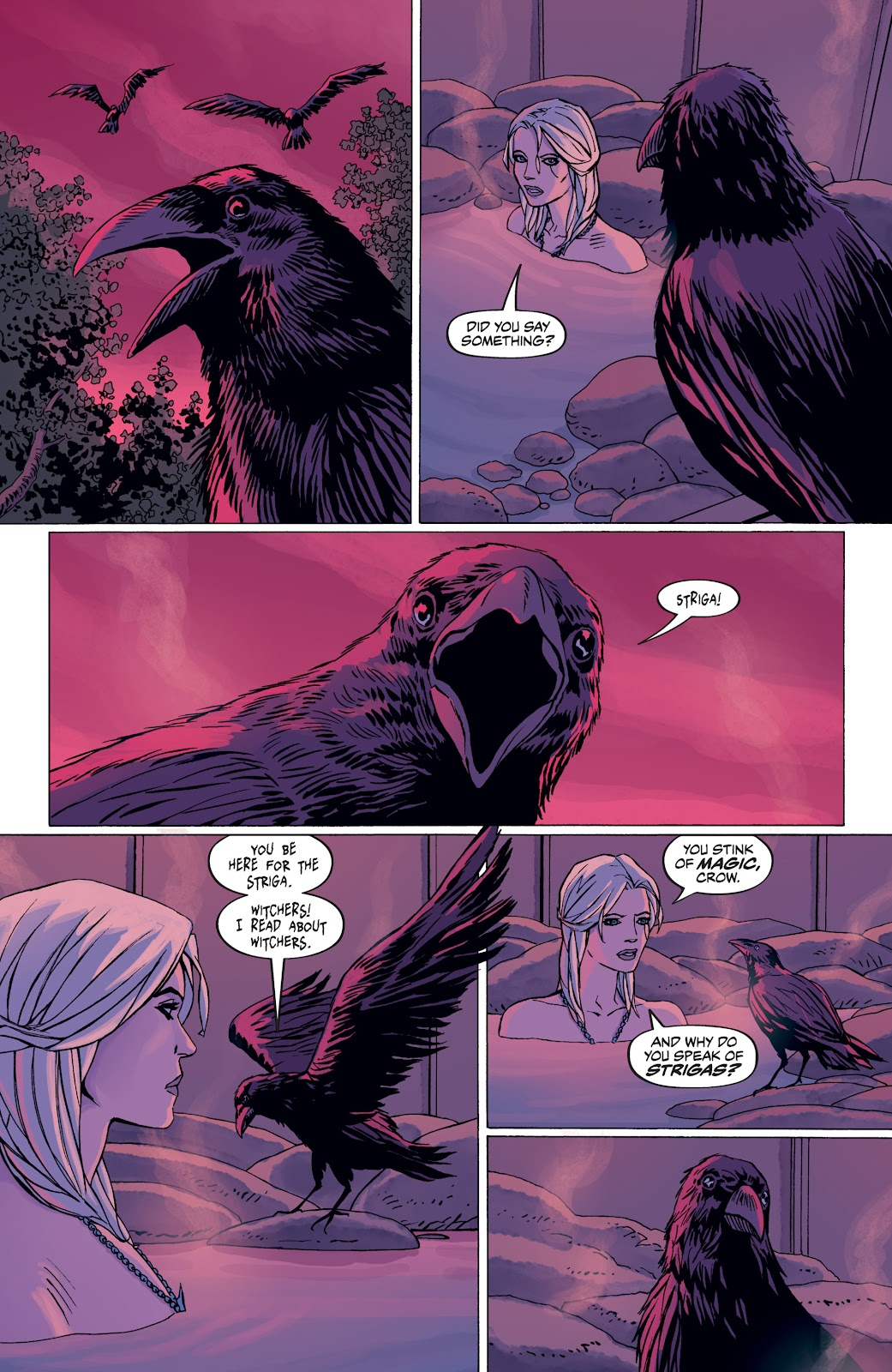 Read online The Witcher Omnibus comic -  Issue # TPB (Part 4) - 24