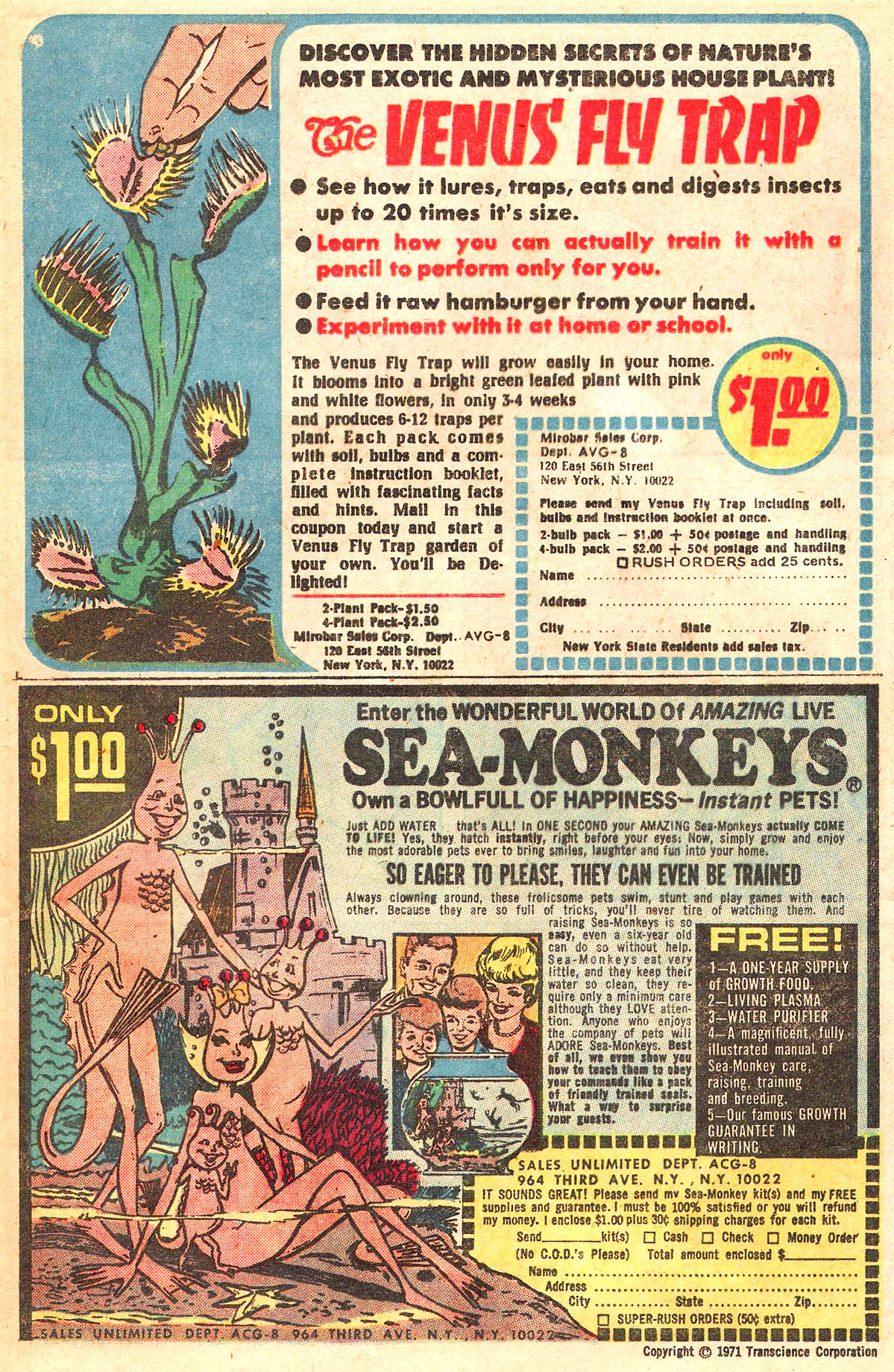 Read online She's Josie comic -  Issue #64 - 41