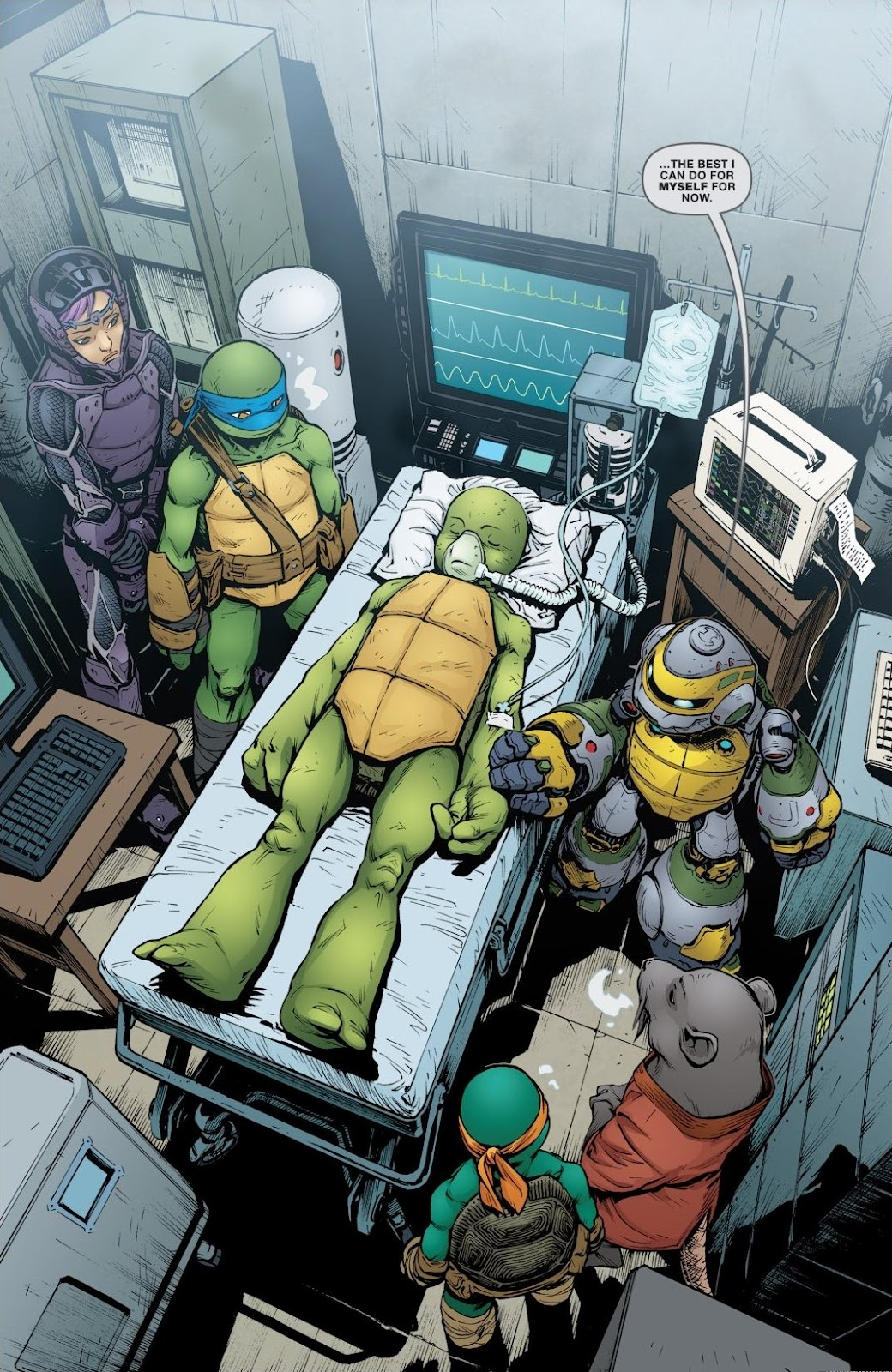 Read online Teenage Mutant Ninja Turtles: The IDW Collection comic -  Issue # TPB 6 (Part 2) - 26