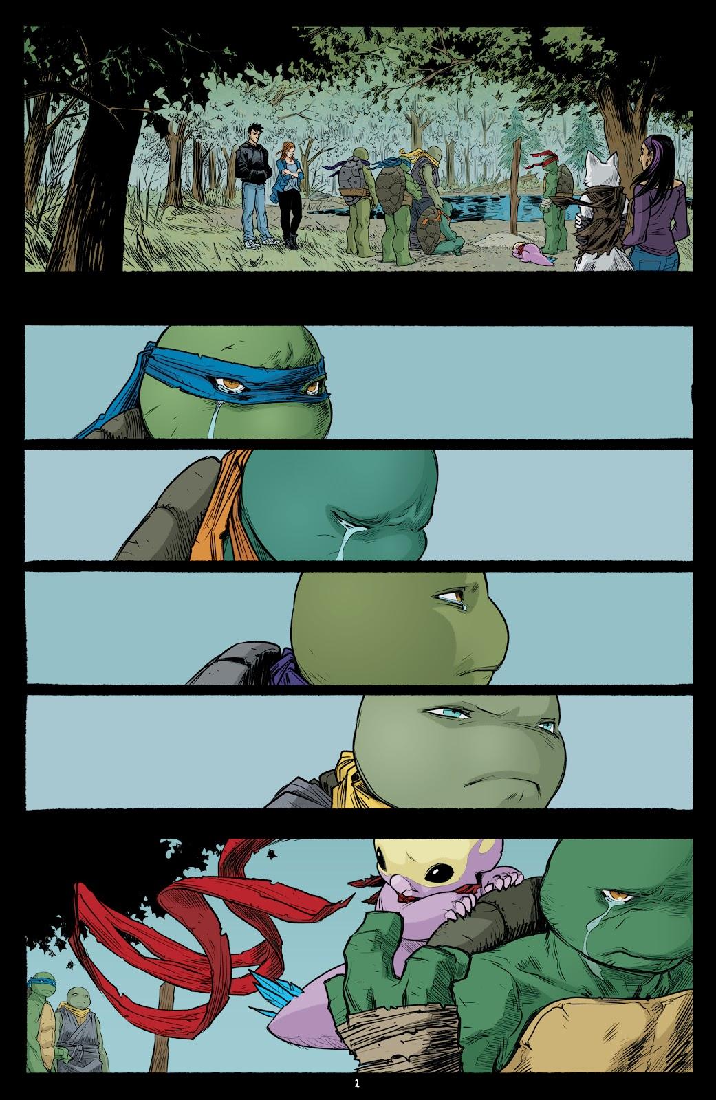 Read online Teenage Mutant Ninja Turtles (2011) comic -  Issue #101 - 4