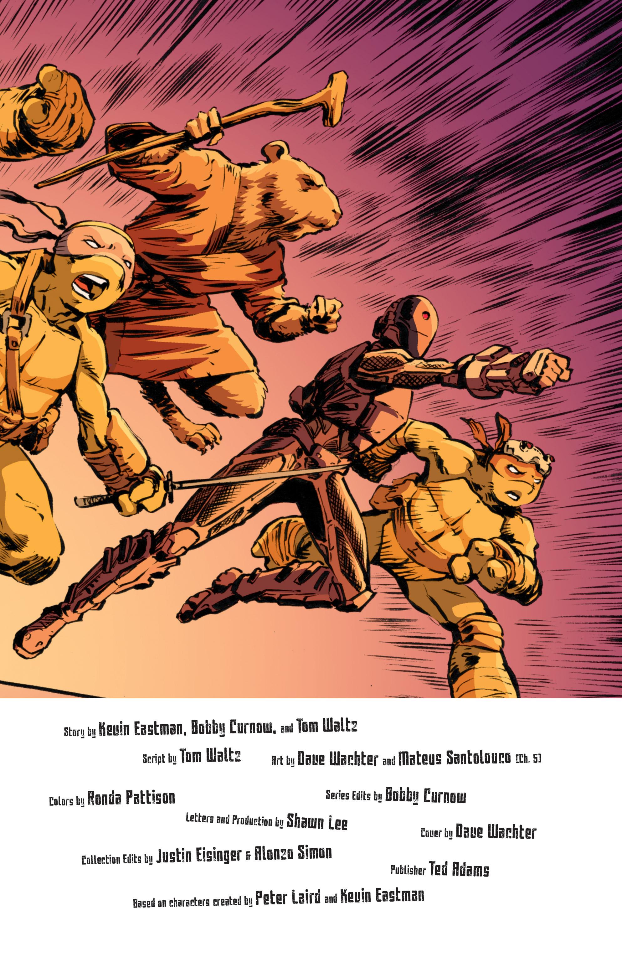 Read online Teenage Mutant Ninja Turtles (2011) comic -  Issue #70 - 27