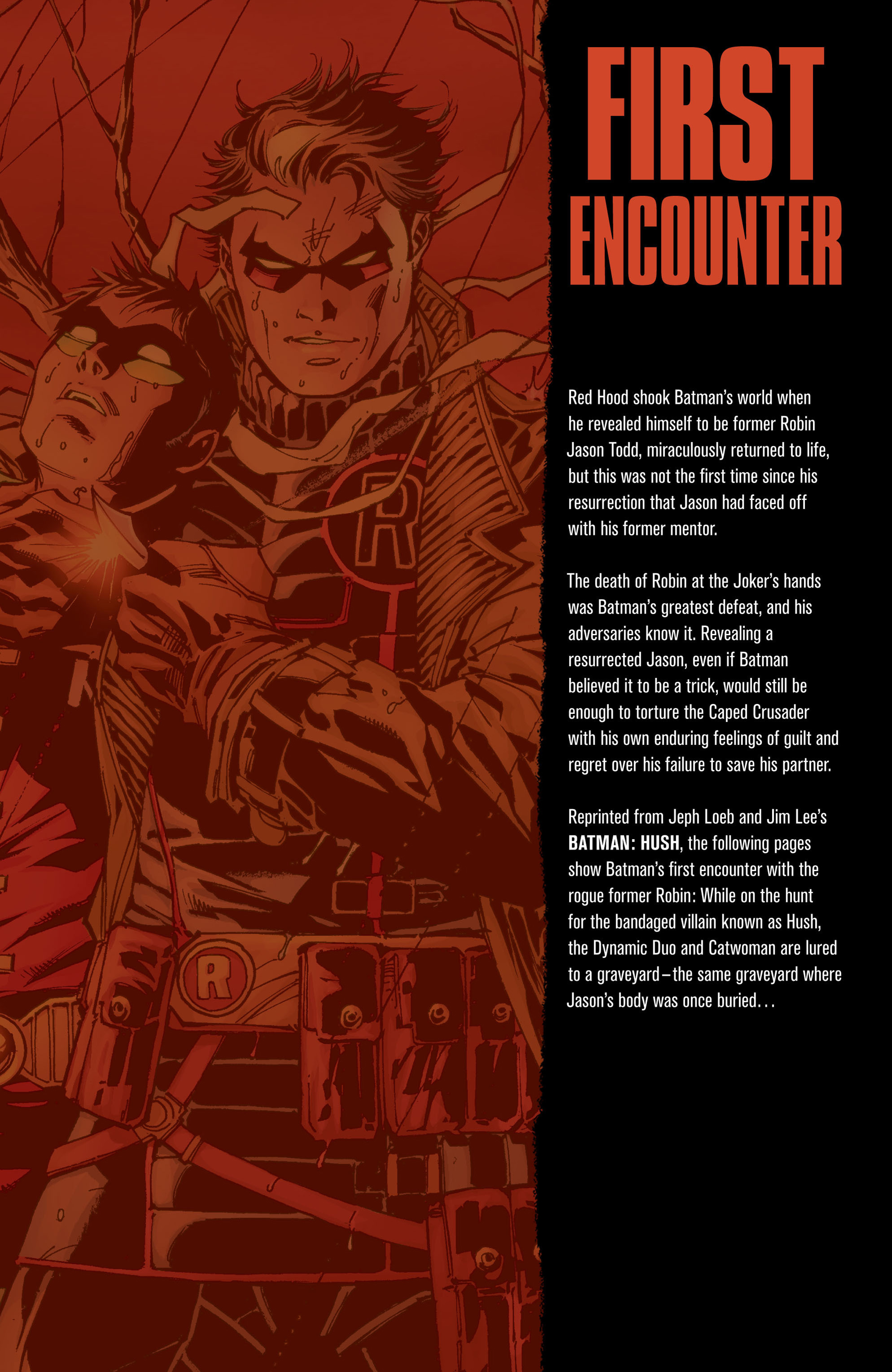 Read online Batman: Under The Red Hood comic -  Issue # Full - 359