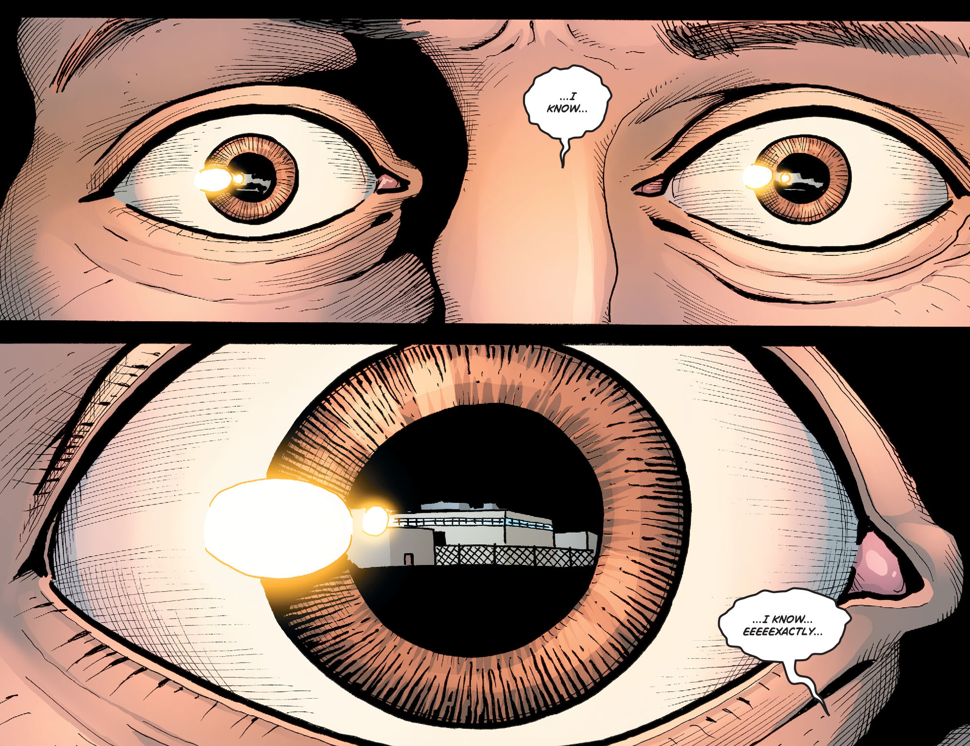 Read online Wonder Woman '77 [I] comic -  Issue #21 - 14