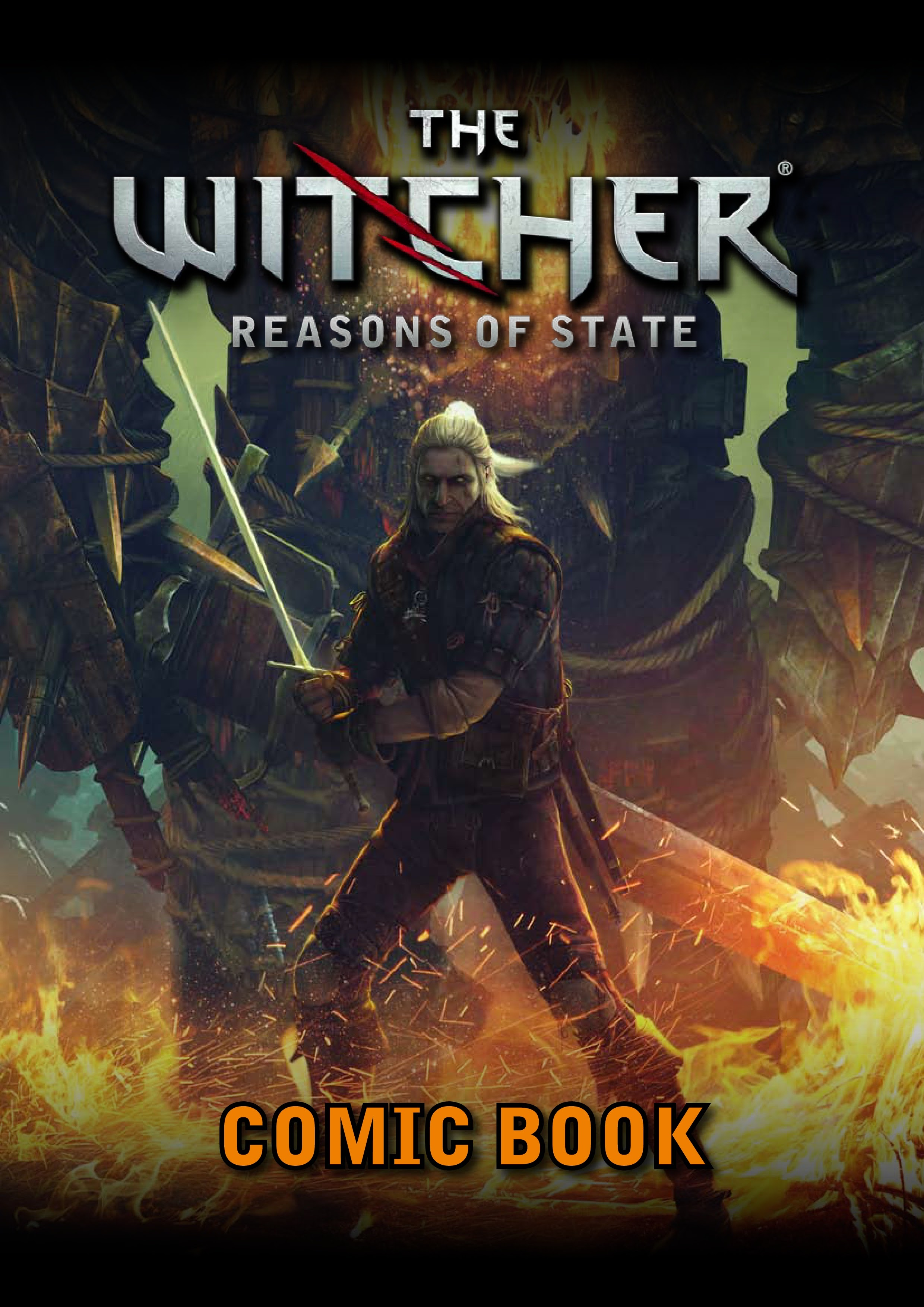 The Witcher: Reasons of State Full Page 1
