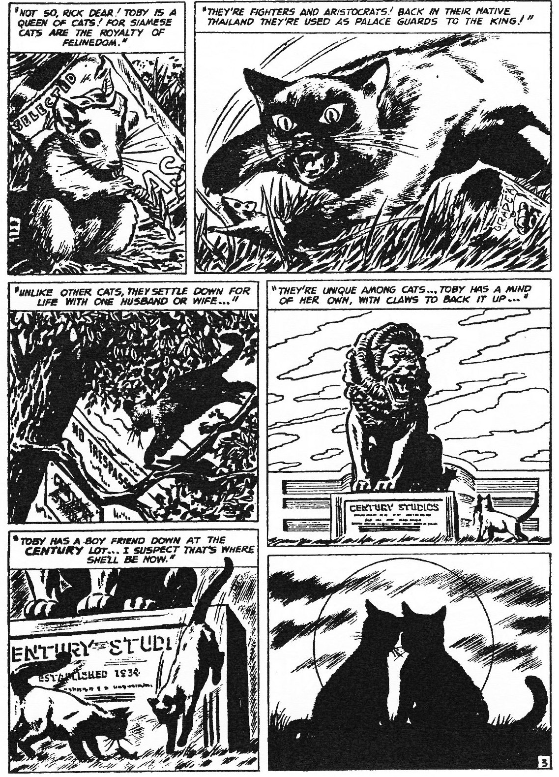 Read online Men of Mystery Comics comic -  Issue #82 - 123