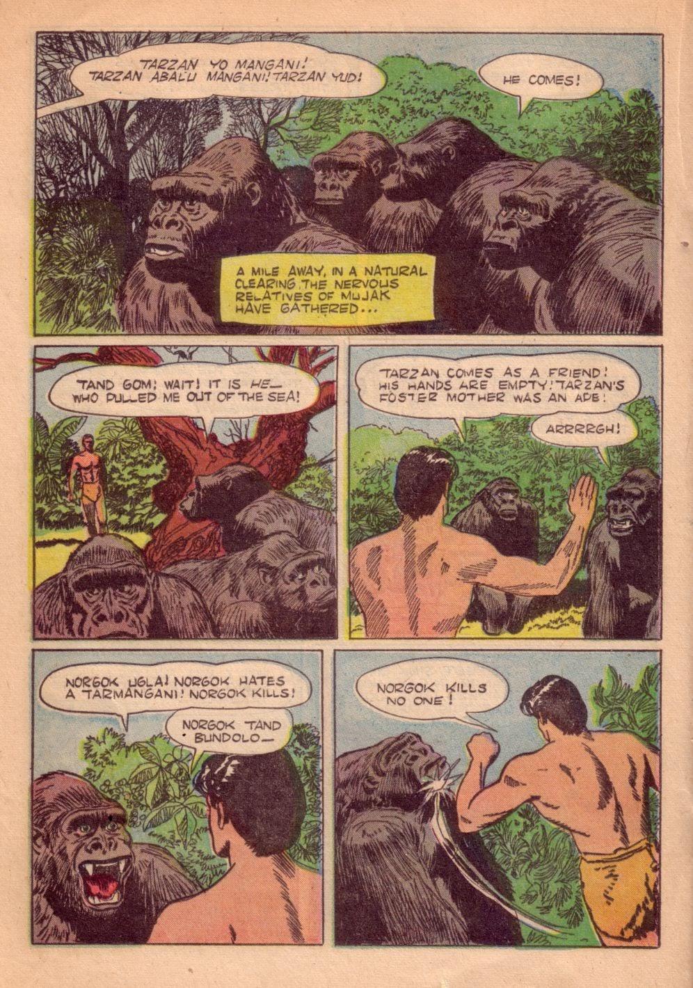 Tarzan (1948) issue 55 - Page 32