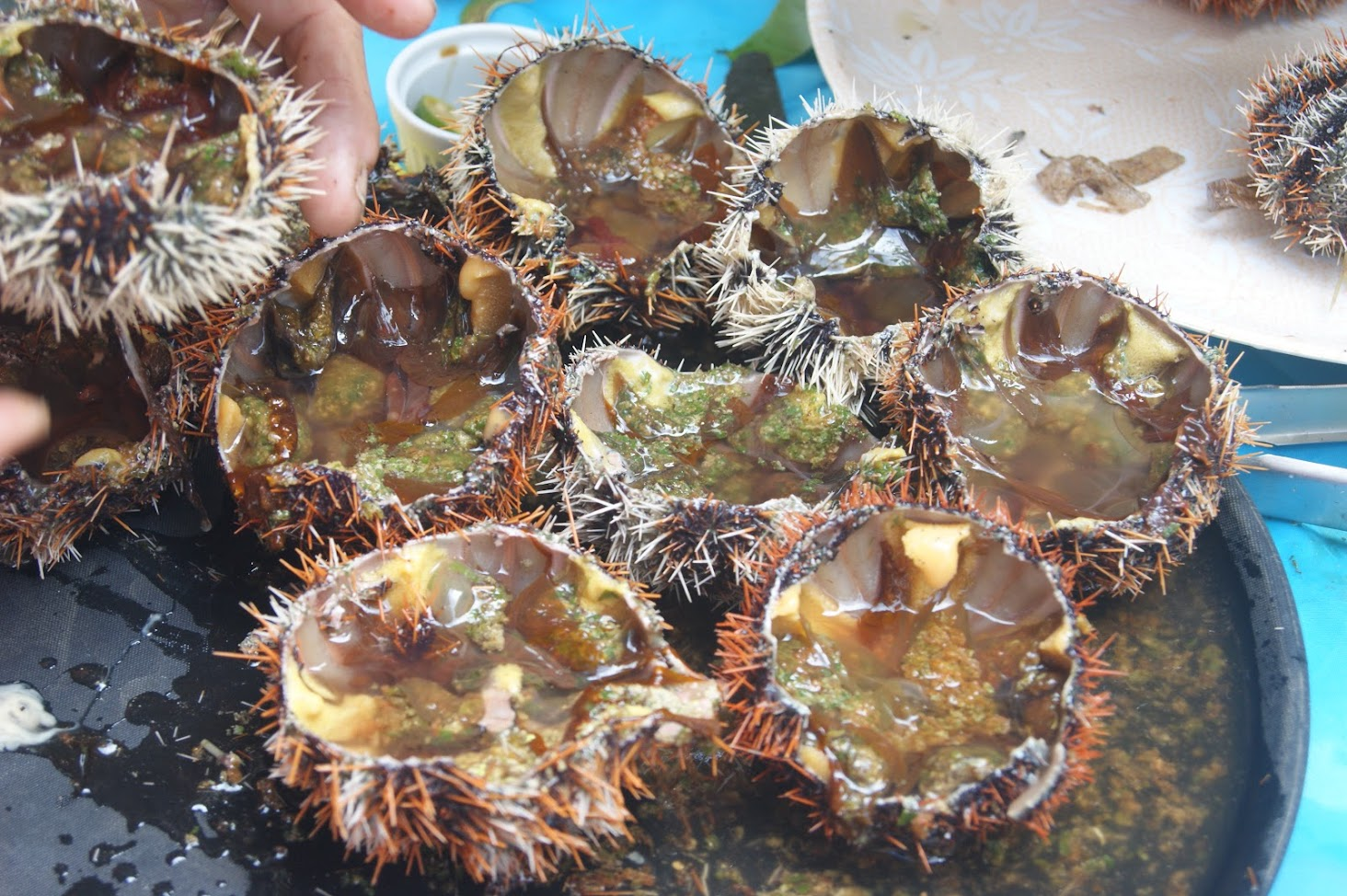 Siquijodnon cuisine in Siquijor Philippines