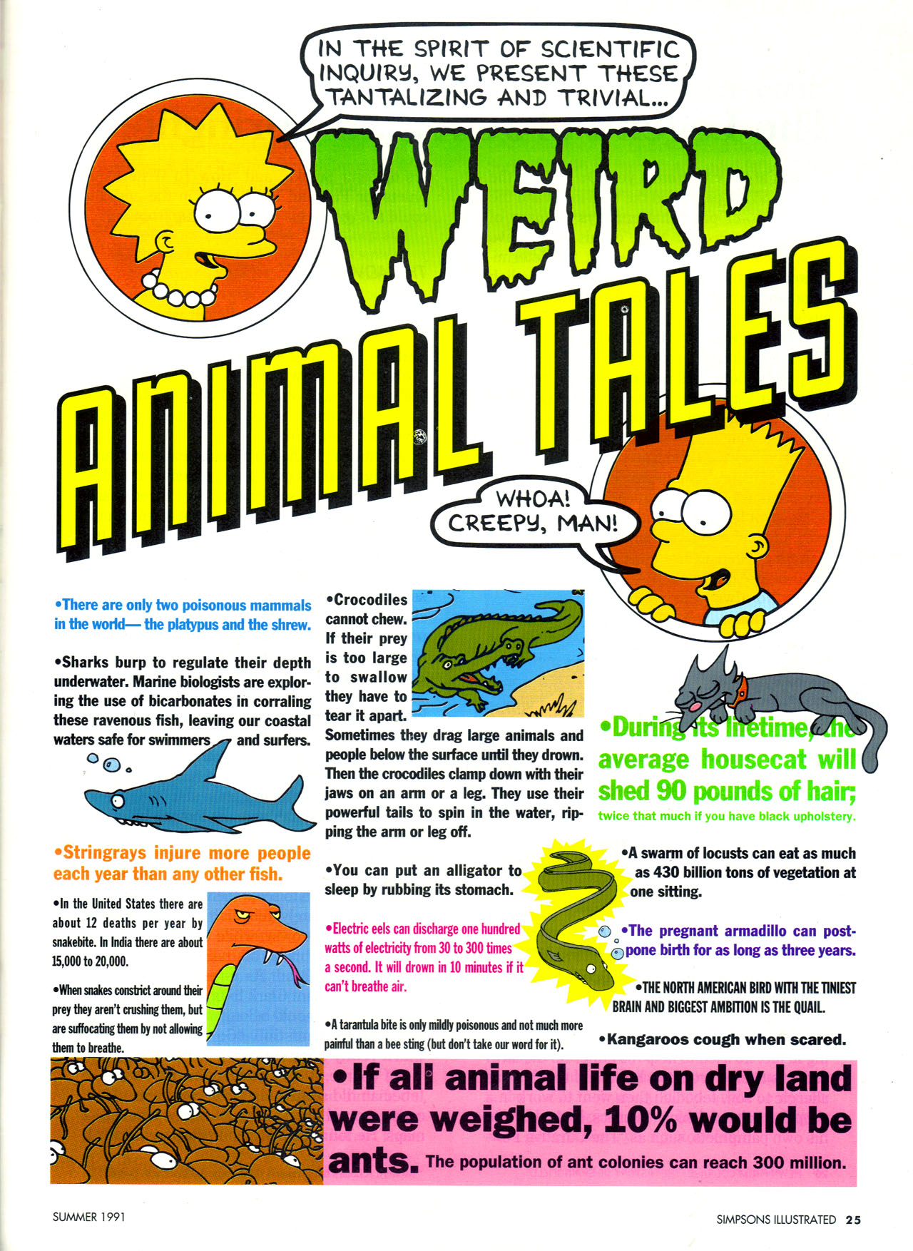 Read online Simpsons Illustrated (1991) comic -  Issue #2 - 26