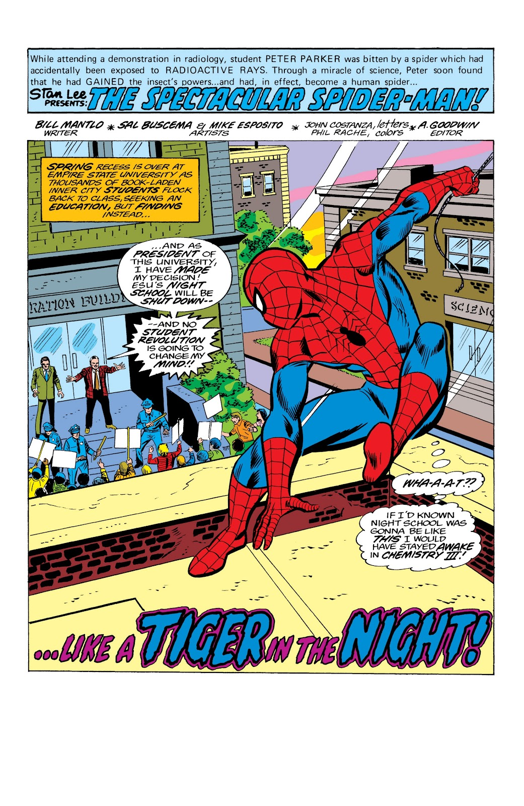Read online Marvel Masterworks: The Spectacular Spider-Man comic -  Issue # TPB (Part 2) - 39