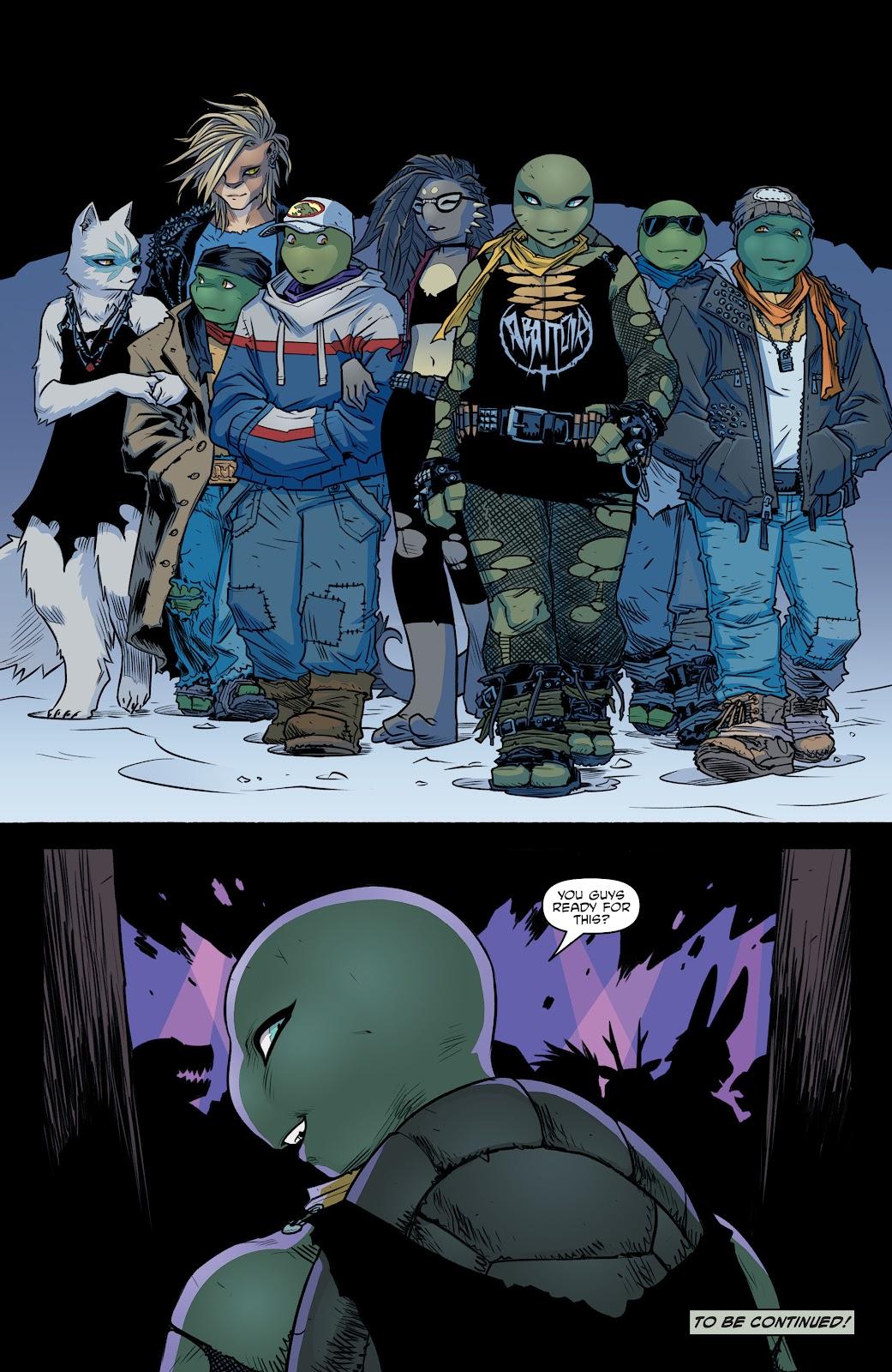 Read online Teenage Mutant Ninja Turtles (2011) comic -  Issue #104 - 22