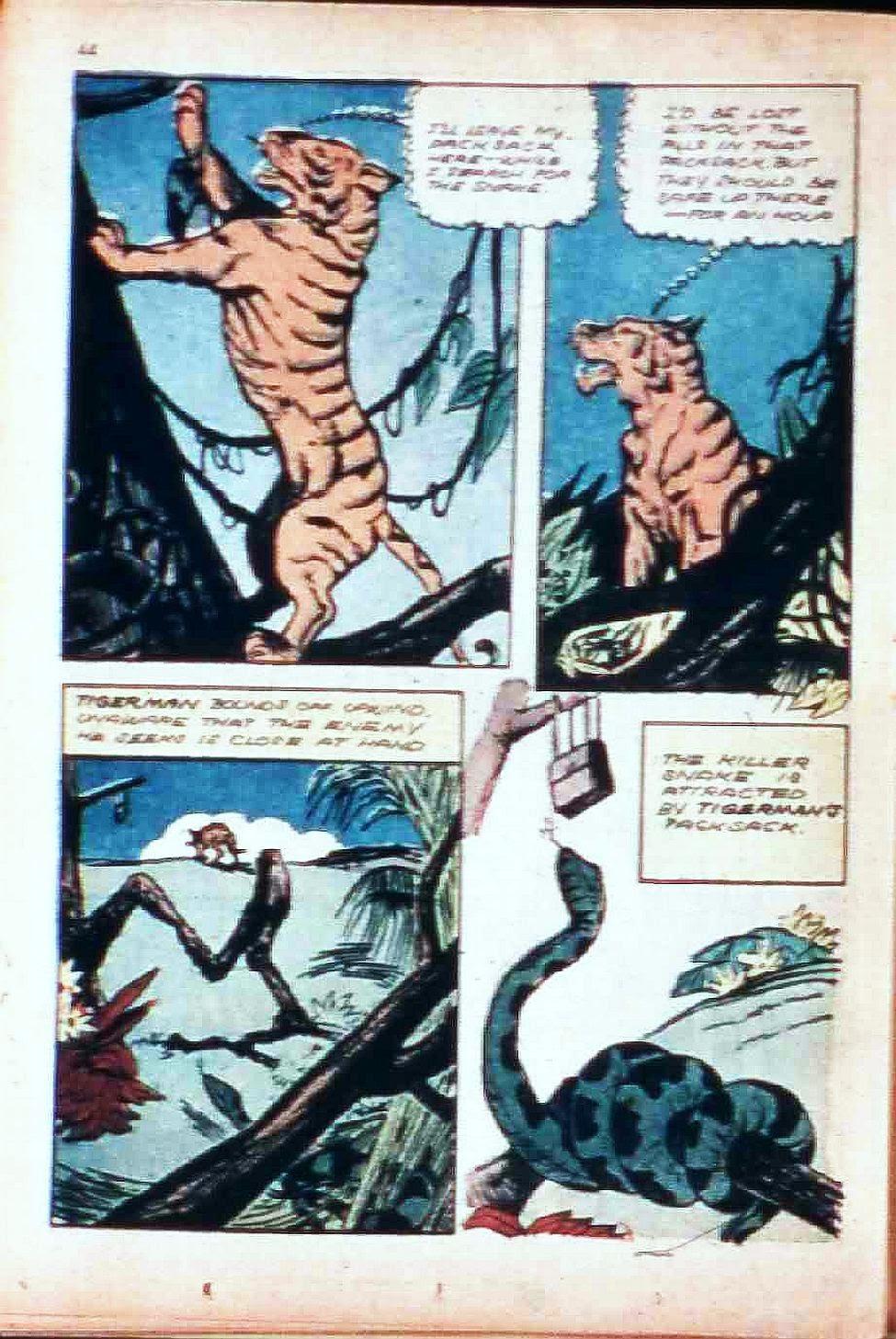 Read online Super-Magician Comics comic -  Issue #17 - 43