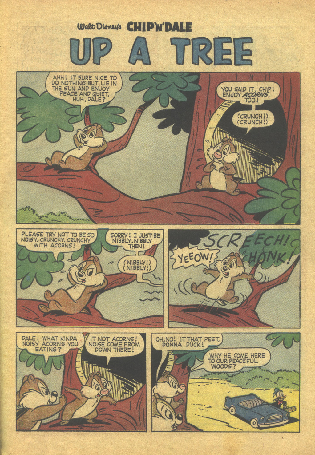 Walt Disneys Chip N Dale issue 26 - Page 31